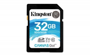 Kingston Technology Canvas Go! memory card 32 GB SDHC Class 10 UHS-I